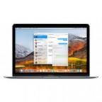 Apple (MNYH2RU/A) 12-inch MacBook: 1.2GHz dual-core Intel Core m3, 256GB - Silver