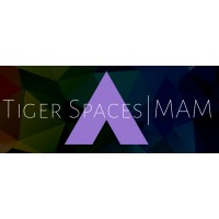 Tiger Spaces|MAM Media Asset Management module by IMC Technologies