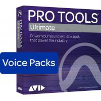 Avid 384 Voice Perpetual Voice Pack